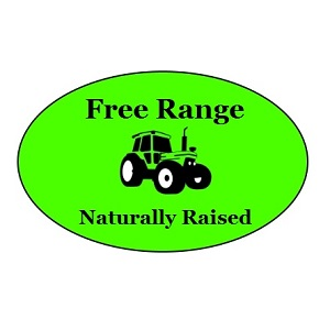 Free Range Grass Fed Beef